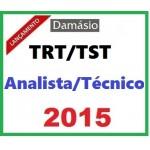 Carreiras Trabalhistas 2015 (INTENSIVO) TRT/TST Analista e Técnico...